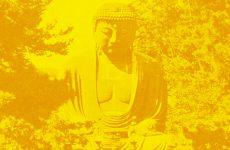 Learn about Eastern philosophy in the company of novelist Tim Lott