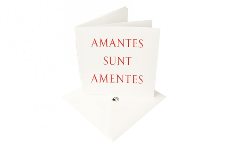 The idler amantes sunt amentes latin greetings card quantity m4hsunfo